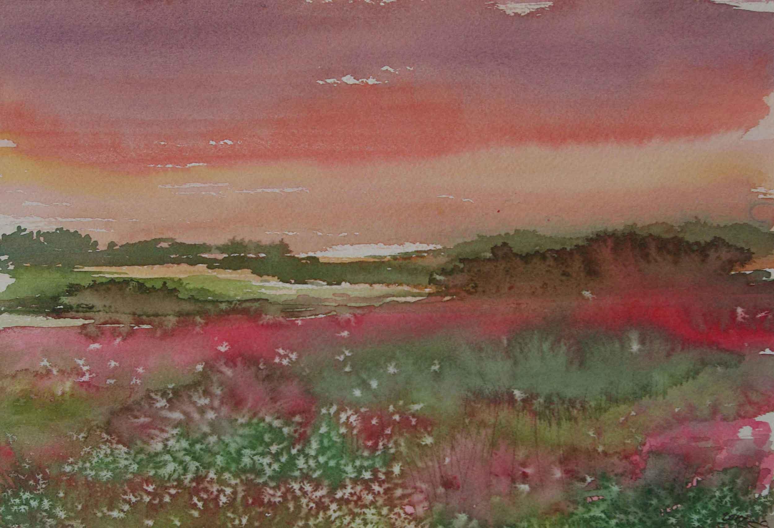 'Sunrise & Tolips'