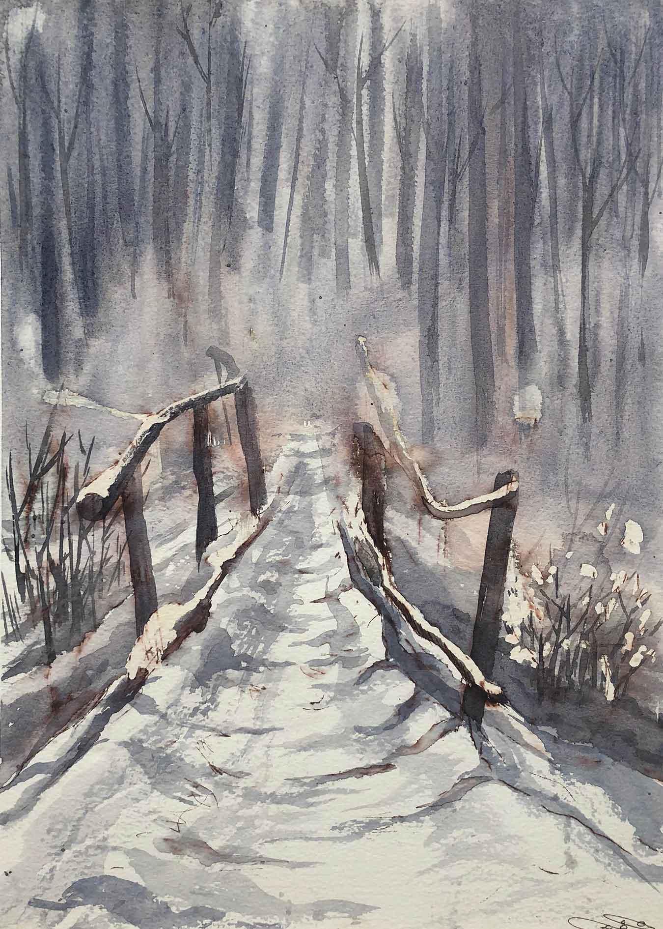 Snow & Bridge
